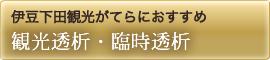 伊豆下田観光がてらにおすすめ 観光検診・観光透析